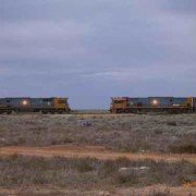 Freight Train passing through Forrest 2