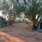 Shady Camping Area (2)