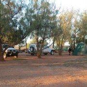 Shady Camping Area (3)